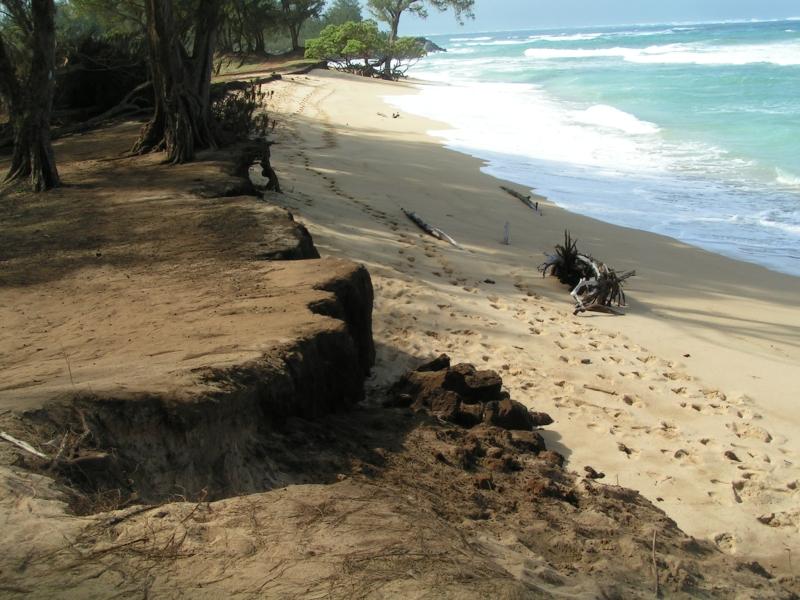 beach 13.jpg