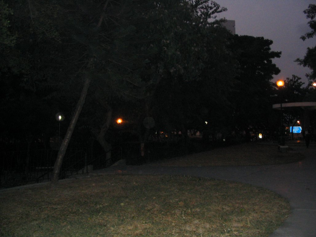 local park at dawn2.jpg