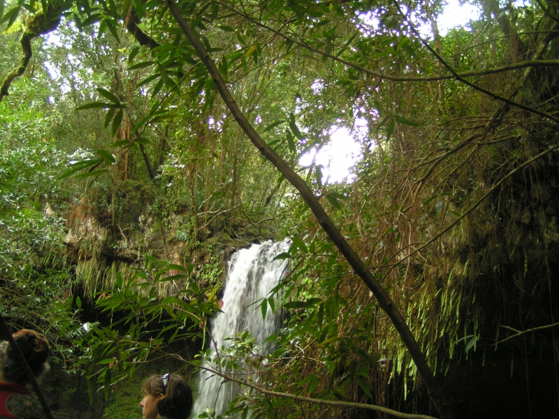waterfall tf 7.jpg