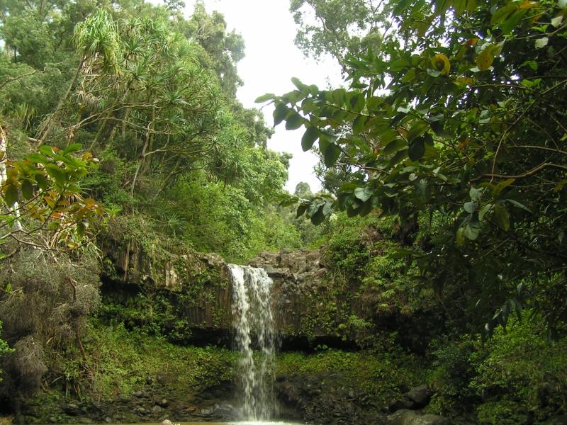 waterfall tf1.jpg